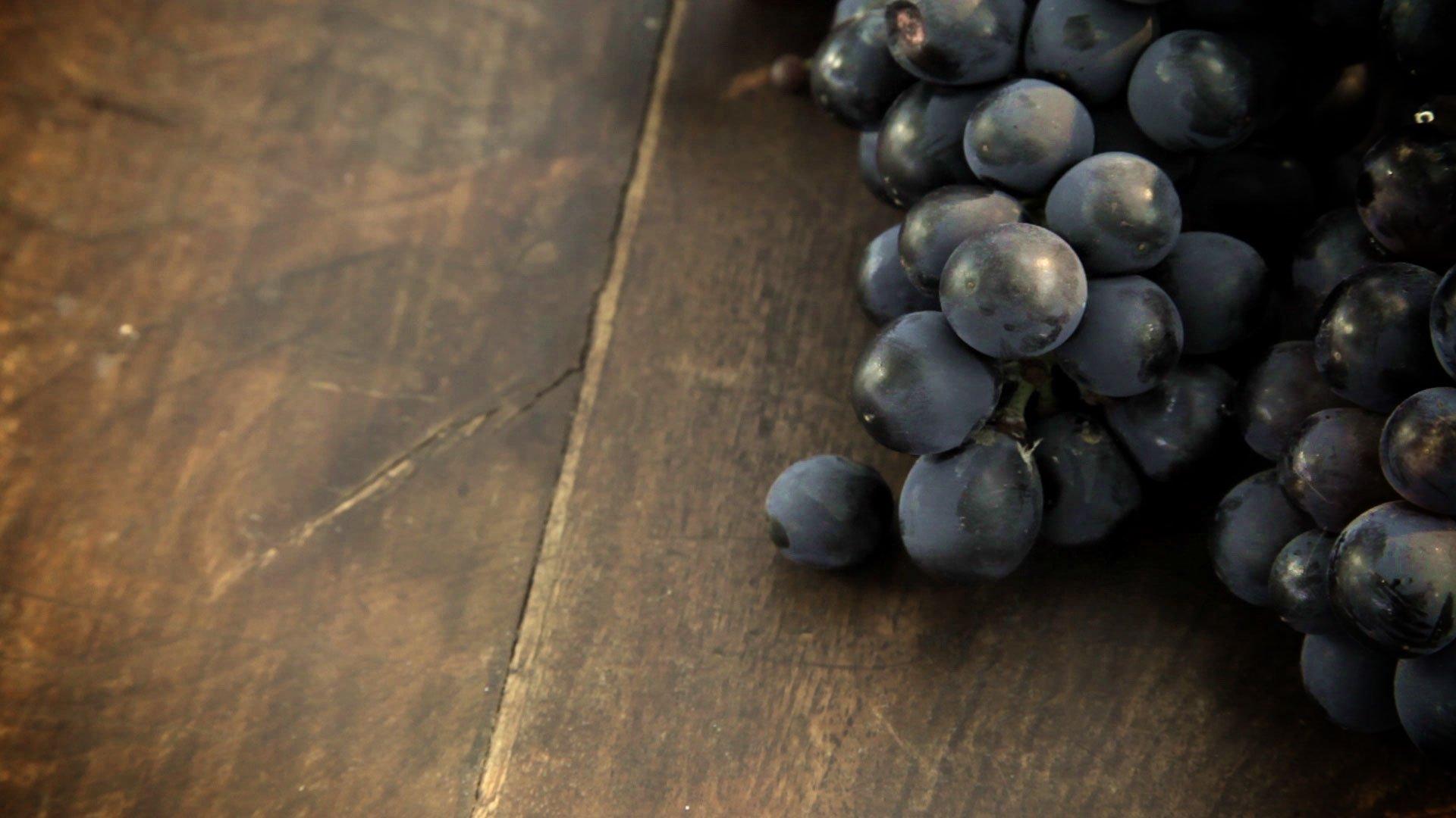 Vini uva